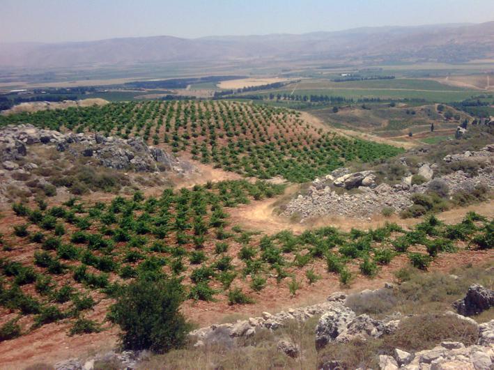 Tour De Lebanon Valley